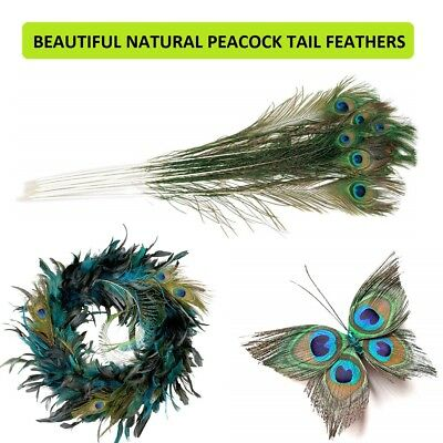 Beautiful Natural Peacock Feathers Tail DIY Wedding Party Decoration 30-35 inch