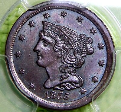 1855 United States Braided Hair 1/2 Cent High Grade Pcgs Ms 66 Brown Copper Half