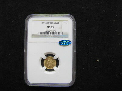 1873 Indian Princess Head Dol., Large Head Open 3, CAC Sticker, NGC Graded MS 63