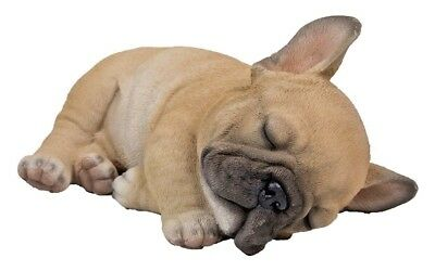 Sleeping French Bulldog Statue Figurine Life Like Realistic Garden Decor New