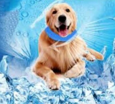 Chillax Chill Cooling Cold Chillout Cool Dog Cooling Collar Dog Collar