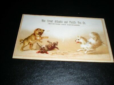 Soooo Cute Victorian Trade Card - 3 Dogs Playing - The Great A & P Tea Company -