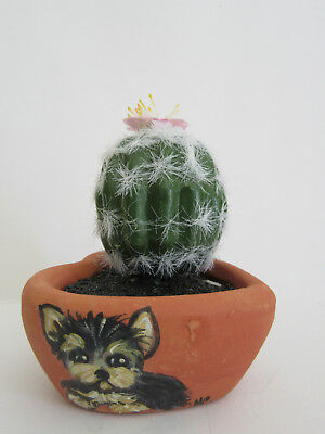 HAND PAINTED ART~~~LITTLE YORKIE Terrier MINI CACTUS POTTED PLANT IN HEART SHAPE