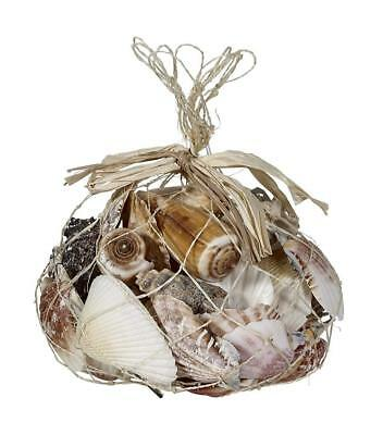 Sea Shells in a Net Bag with approx. 1.25 lb Mixed Assortment of Natural Seashel