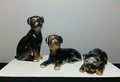 Vintage Lot Of 3 ROTTWEILER Porcelain Figurines Perfect Condition!