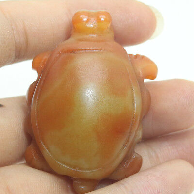 Chinese Hongshan culture style red agate hand carved tortois pendant amulet L097