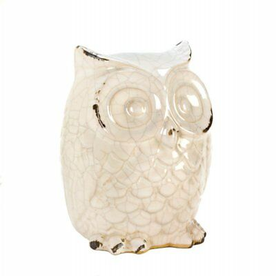 Accent Plus Wide-eyed Glazed White Owl Statue