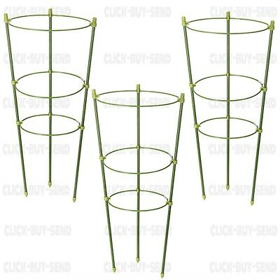 3 RING GARDEN PLANT SUPPORT 450mm HIGH CLIMBING PLANT TIE SUPPORT PACK OF 3