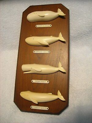 Hand Made Whale Wall Plaque