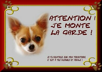 Pancarte Attention Chien Plastifiee Chihuahua 1