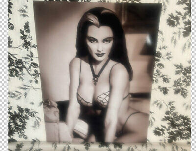Tv Land The Munsters Yvonne De Carlo Lily Munster Sexy Hot Actress Photo Poster