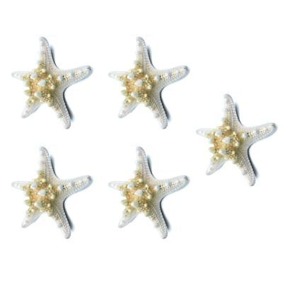 3X(5pcs/lots crafts white bread sea shell starfish, fashion home decorativ M6O2)