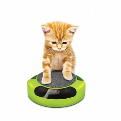 Home Locomotion Feline Frenzy Pet Game