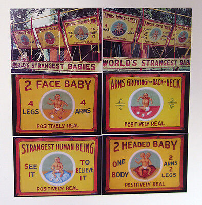 WORLD'S STRANGEST BABIES 6 Postcard Set - Sideshow - FREAK SHOW - Pickled Punk