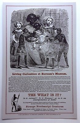 "Living Curiosities at Barnum's Museum ""WHAT IS IT"" Zip The Pinhead Freak POSTER"