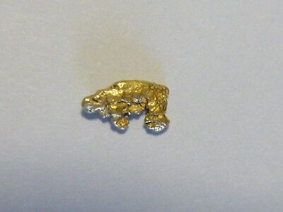 Gold Nugget looks like Polar Bear   .249 Grams and 2 grams Silver Round