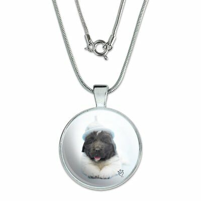"Newfoundland Puppy Dog Knitted Beanie Hat 1"" Pendant w/ Silver Plated Chain"