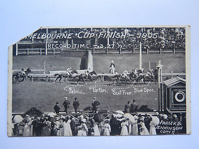 Postcard Horse Racing Photo Fraser & Jenkinson Series Melbourne Cup Finish 1905