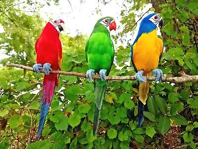 (3) Handcrafted Ultra Lightweight Parrots With Real Feathers/bendable Feet!