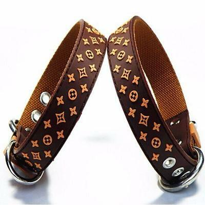 Designer Style Leather & Nylon/Rubber Dog Collar or Leash Set