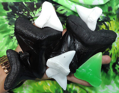 Seconds, Lot Of 10 Sharks Teeth Replica Megalodon Great White..