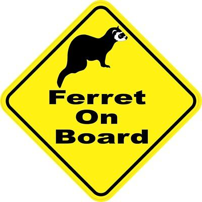 5in x 5in Ferret On Board Magnet Car Truck Vehicle Magnetic Sign
