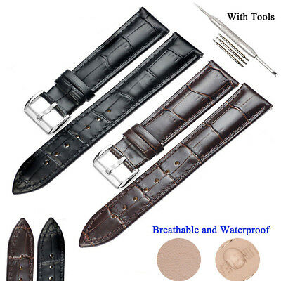 12-24mm Genuine Leather Mens Silver Buckle Formal Wrist Watch Bands Strap & Tool