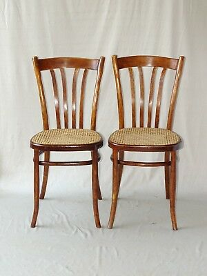 2 Chaises Turpe bistrot cannées, Allemagne1910 ( No Thonet )