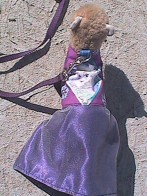 "Ferret Harness Dress and Lead - Elsa ""Frozen"""