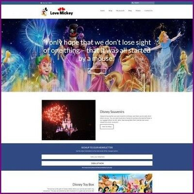 DISNEY Dropshipping Website Business For Sale - Work From Home