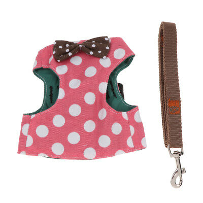 Chien chat laisse Pet Control harnais gilet de marche collier sangle de