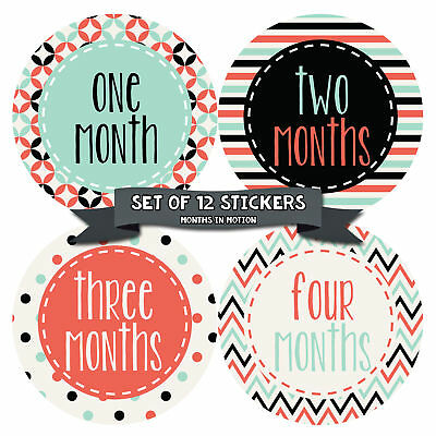 MONTHS IN MOTION Monthly Baby Stickers Newborn Infant GIRL Milestone Photo Prop