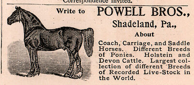 Ad Lot Of  5 1890 -1896 A  Ads  Powell Bros Shadeland Pa  Horse Breeders