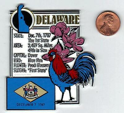 DELAWARE  STATE MONTAGE FACTS MAGNET with state  bird  flower  and flag,