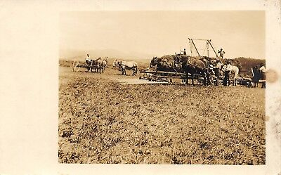 Real Photo Postcard~Farmers Plowing~Farm Implements~Horse Teams~c1912 RPPC