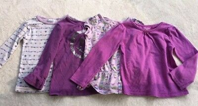 Lot 4 Pc Girls Size 3t Shirts Tops Carters Children's Place & More