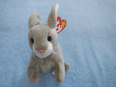 TY BEANIE BABY - NIBBLY the RABBIT - MAY 7 BIRTHDAY - CUTE BUNNY - ACTUAL PHOTO