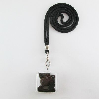 Holy Black Necklace Old Carve Leo Lion King Pendent Charm Wealth Powerful Amulet