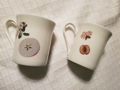 Fine Bone China Queen's The Royal Horticultural Society hooker's fruit mugs x 2.