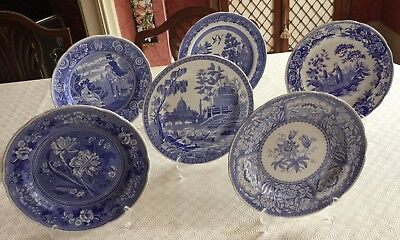 Spode blue room collection six dinner plates