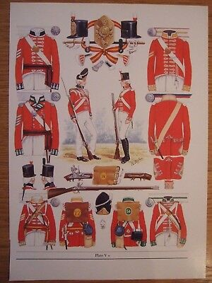 MILITARY PRINT-1802 INFANTRY OF THE LINE-NCOs & PRIVATES  BY  B FOSTEN