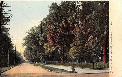 Charleston West Virginia~Shade Trees on Kanawha St~Water Pump 1906 Postcard