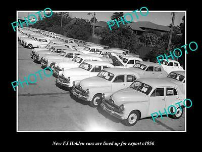 OLD LARGE HISTORICAL PHOTO OF THE FJ HOLDEN CARS LINED UP READY FOR EXPORT c1954