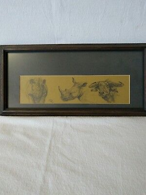 Cape Buffalo & Rhino Charcoal Sketch Africa Wall Art by John Jones Zoo Animals