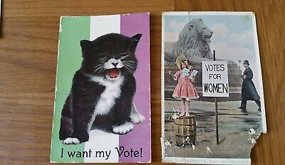 Iconic Original Cat Suffragette Postcard Unused Plus One Other. Rare Vintage.