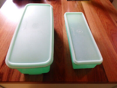 Two Tupperware celery/vegetable containers . Green base & Insert & Clear lid.