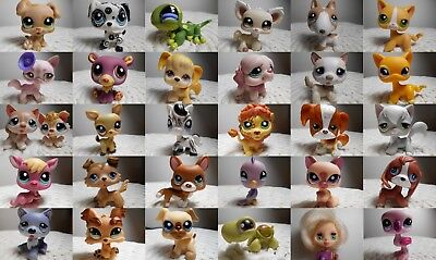 petshop pet shop LPS rare chien chat européen colley teckel dog european cat