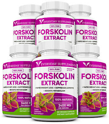 6 x Forskolin Maximum Strength 100% Pure 3200mg Rapid Results! Forskolin Extract