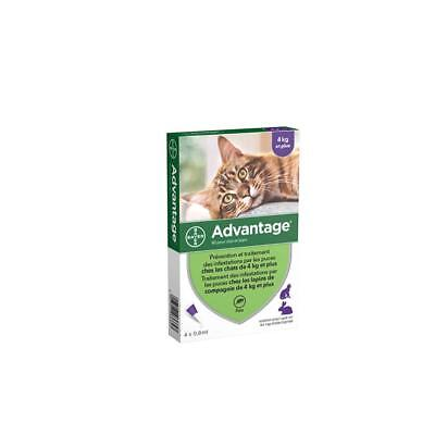 4 Pipettes Antiparasitaire Anti Puces Tiques Vermifuge Grand Chat 4-10KG 0,8ml