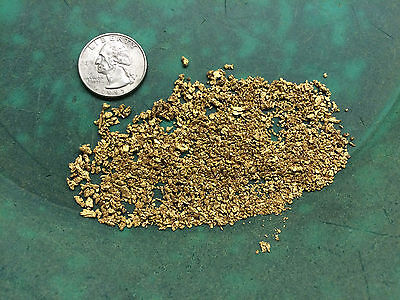 Rich GOLD PAYDIRT XL Nugget - Now offering PREMIUM PAYDIRT! panning flakes